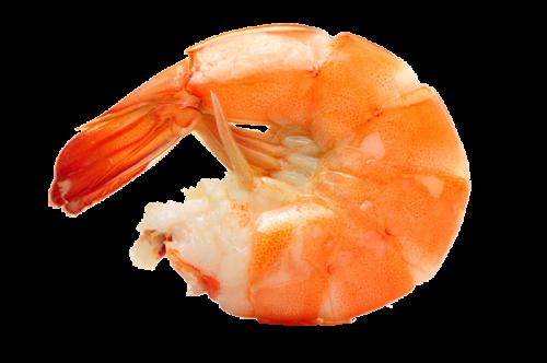 crevette-paella